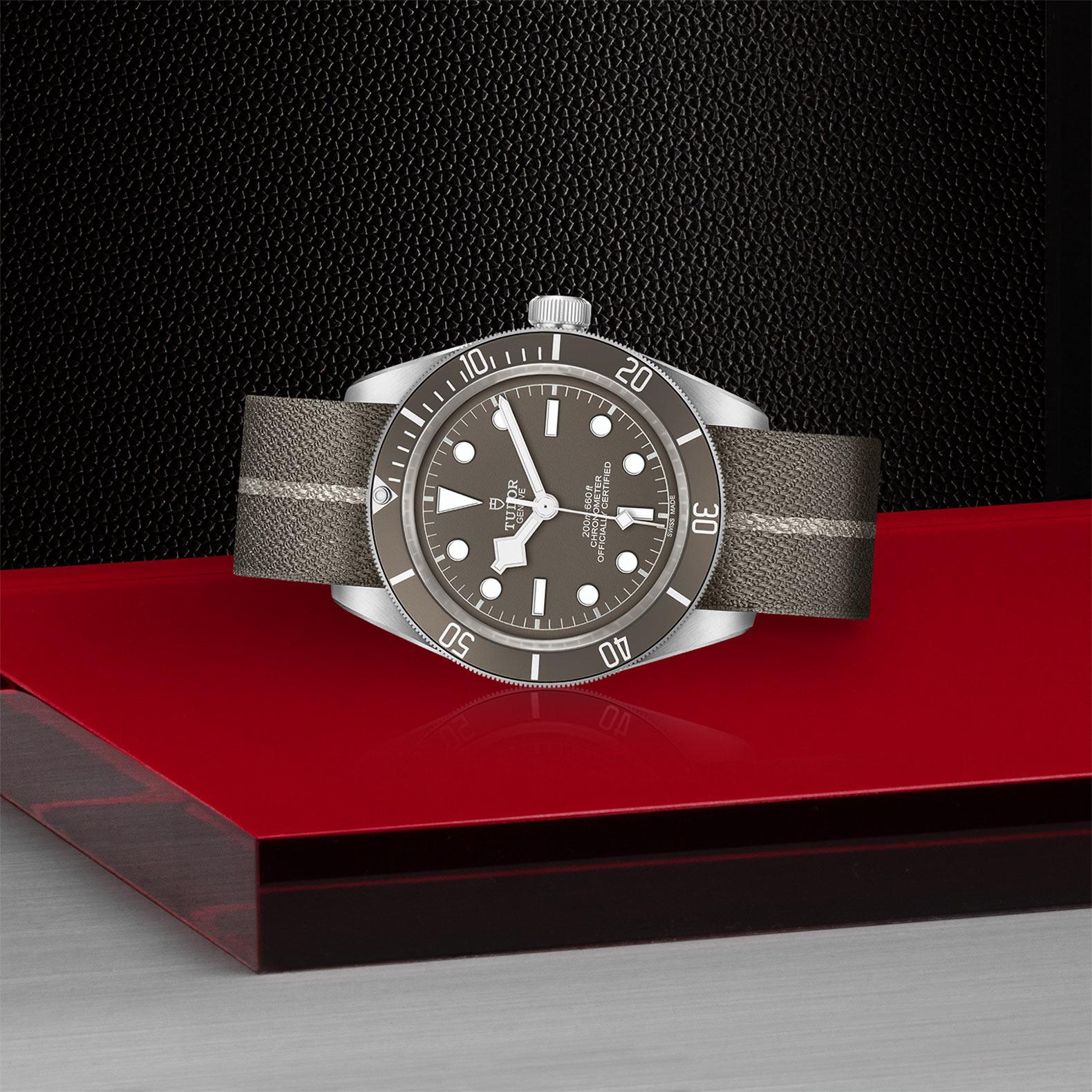 Tudor Black Bay Fifty-Eight M79010SG-0002