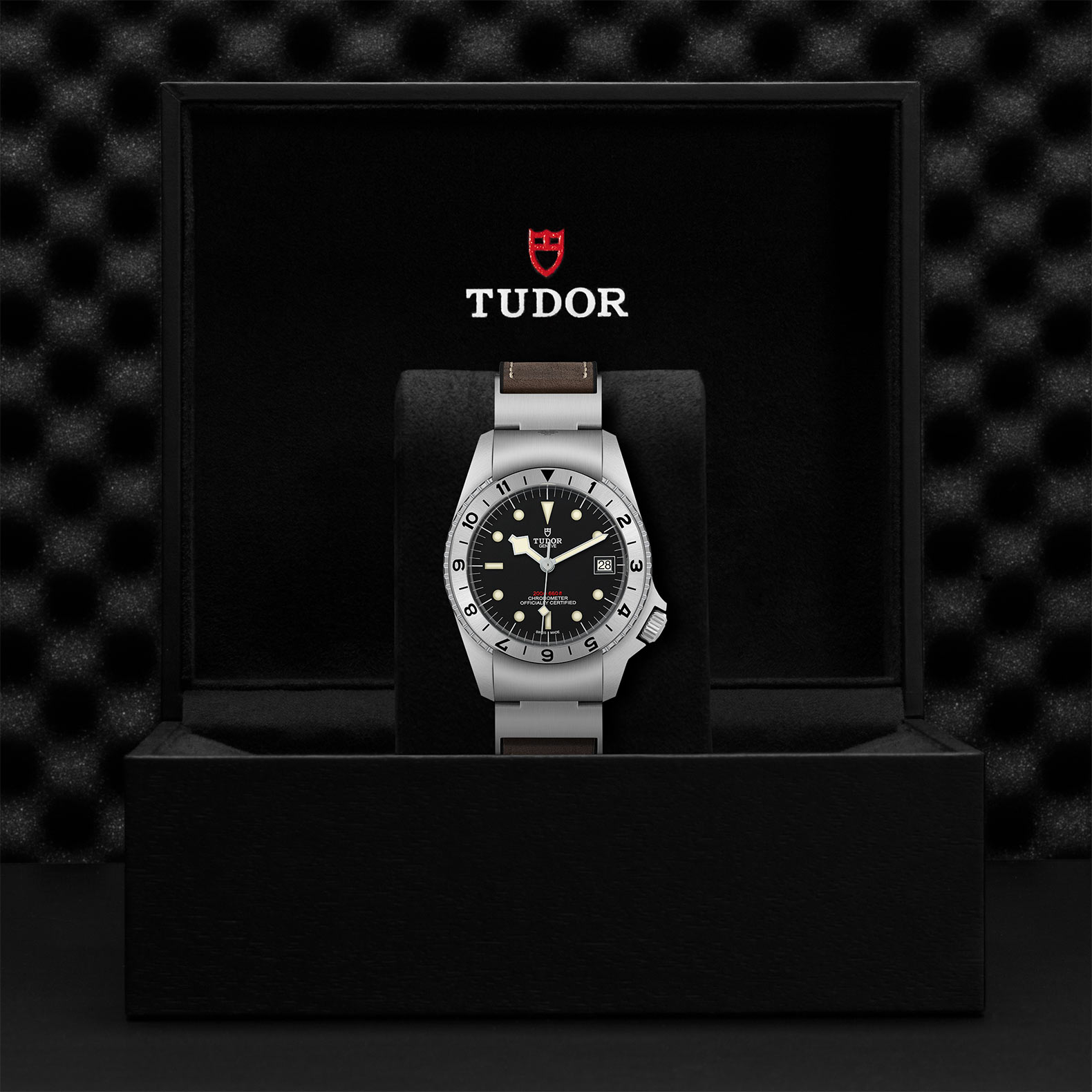 Tudor Black Bay P01 M70150-0001