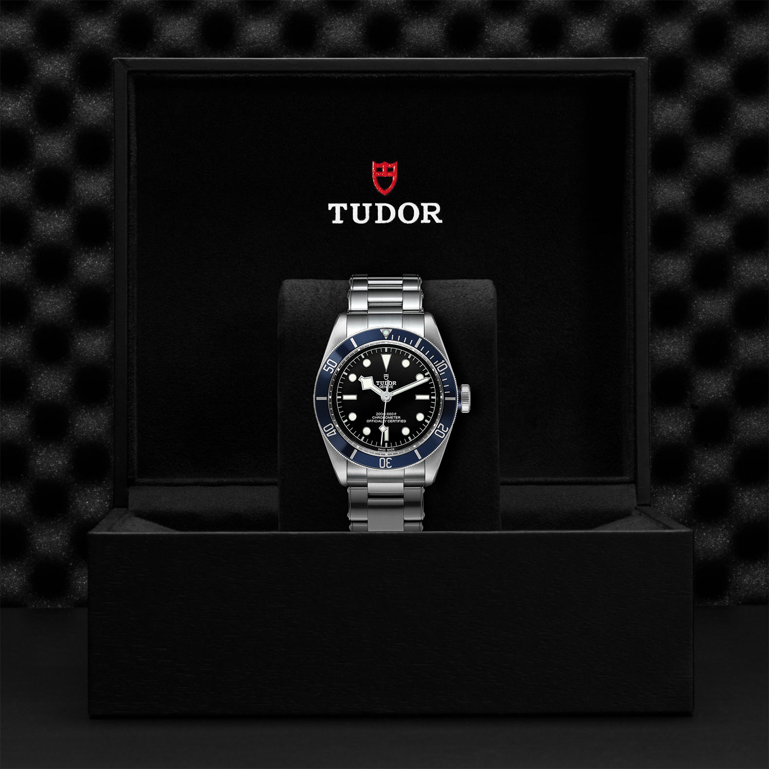 Tudor Black Bay M79230B-0008