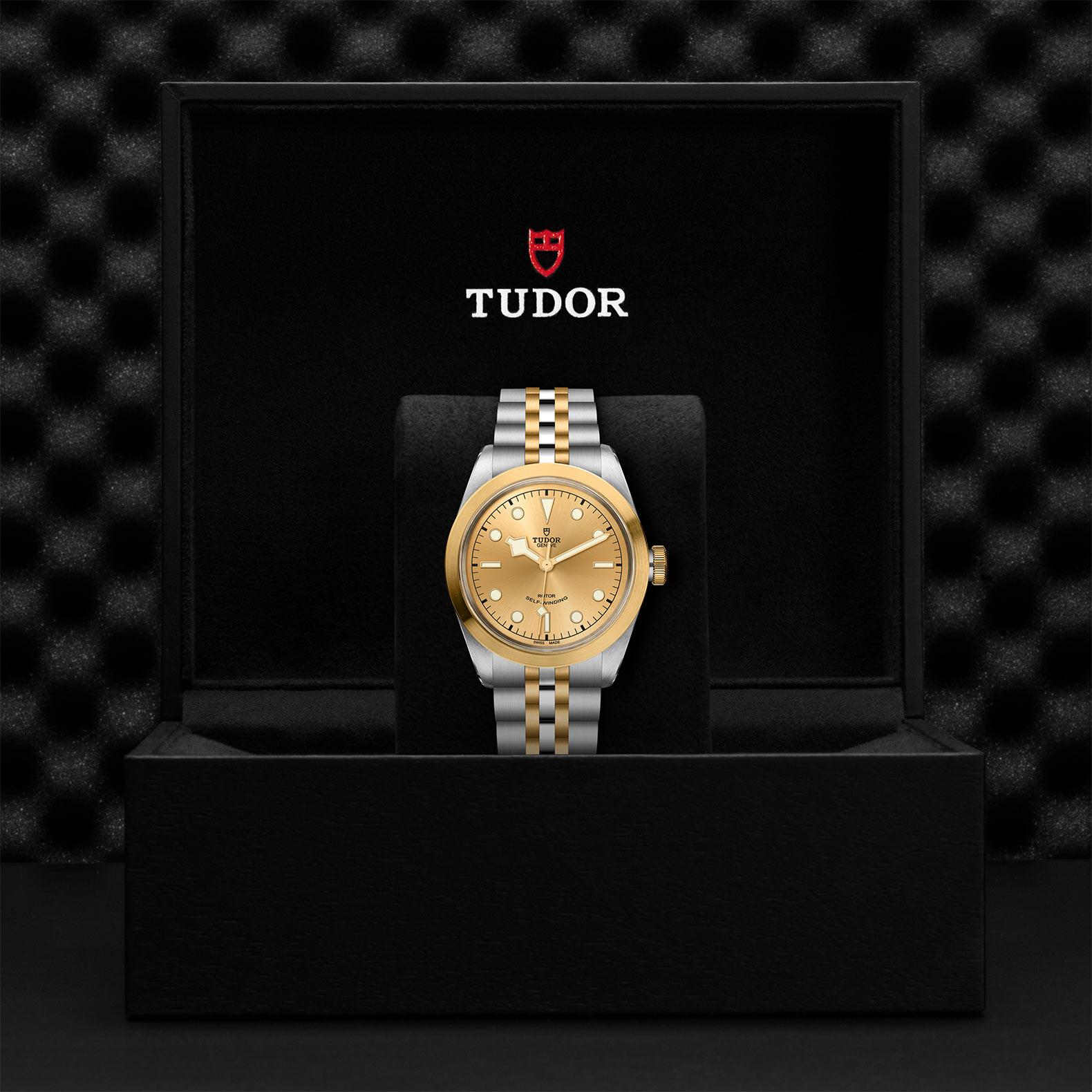 Tudor Black Bay 32 / 36 / 41 M79543-0002