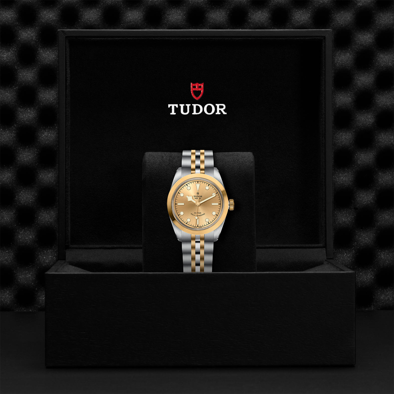 Tudor Black Bay 32 / 36 / 41 M79583-0002