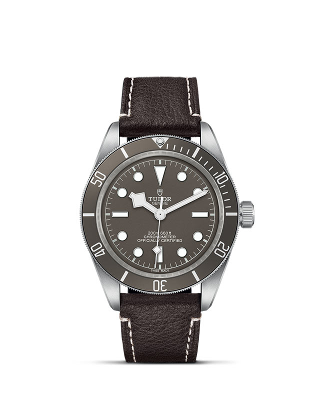 Tudor Black Bay Fifty-Eight M79010SG-0001